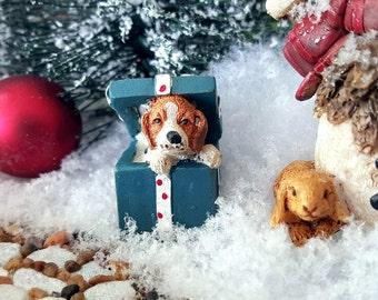 Miniature Puppy in a Gift Box