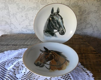 Decorative Horse Plates - Made In Japan