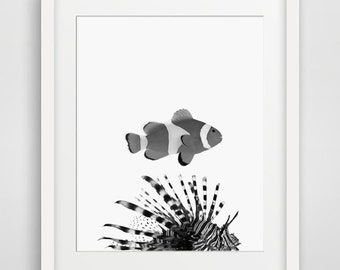 Fish Print, Nursery Animal Wall Art, Kids Printable Art, Black and White Fish Print, Ocean Print, Nursery Printable, Kids Art, Fish Art