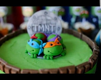TMNT cake topper and 24 x cupcake toppers