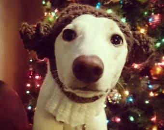 Princess Leia style dog hat star wars dog accessory