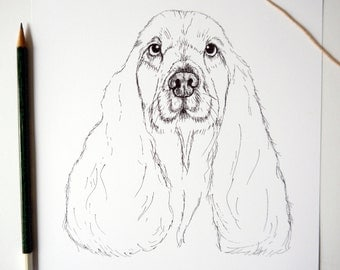 Soppy Spaniel A4 Illustrated Print