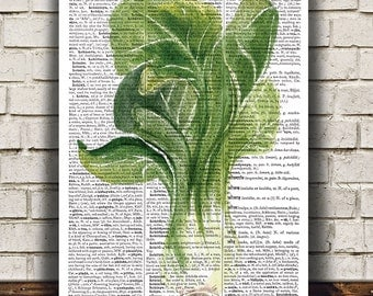 Food art Watercolor print Kitchen print Vegetable poster RTA1609