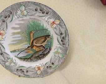 Vintage Adams Long Billed Curlew Collectors Plate Birds of America Series