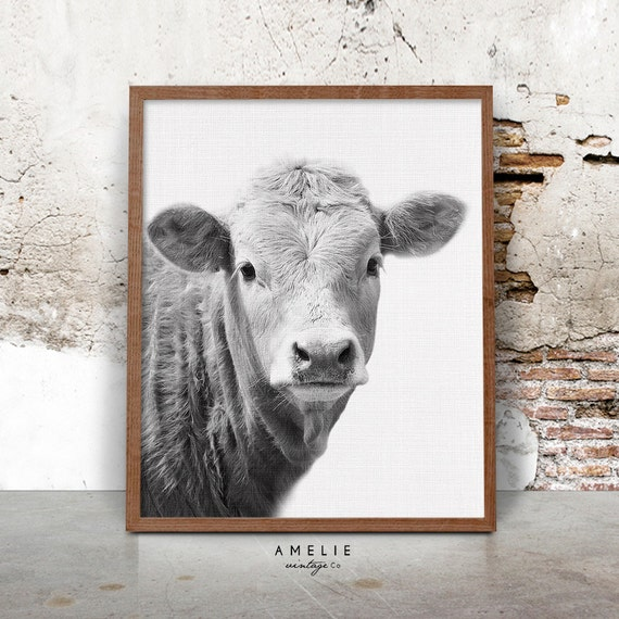 Zebra Print Kitchen Decor: Farmhouse Decor Cow Print Rustic Home Decor Country Cottage