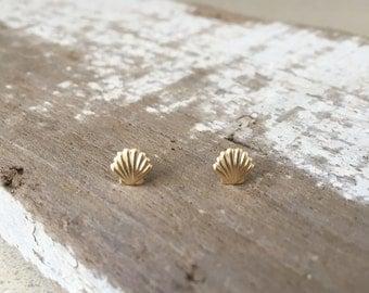 Tiny Shell Stud Earrings