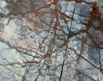 Puddle Water No. 1