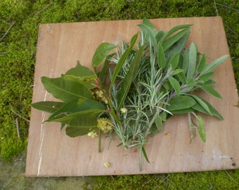 Bag of Fresh Aromatic Organic cooking Kitchen Herbs from Norfolk England,Rosemary,Sage,Bay