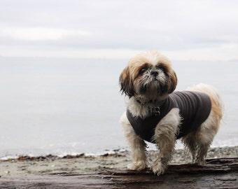 Microfleece dog sweater - grey