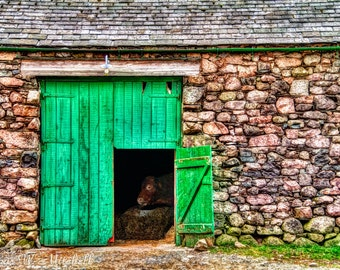Digital Download,Barn Door and Cow,England,Fine Art Photography
