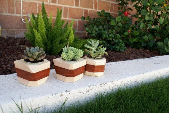 Modern Geometric Wood Succulent Planter