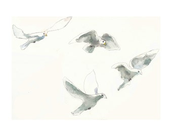 Seagulls Flying. Watercolor