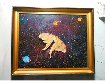 Real Luna Moth Shadowbox Art Multi Media Unusual Taxidermy Original Artwork Outer Space Galaxy Cosmic Journey Planets Stars Meteors