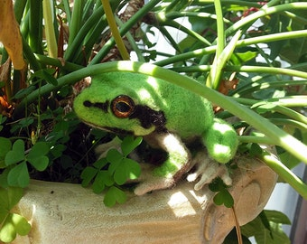 Tree Frog- a needle felted soft sculpture from Eel Omen