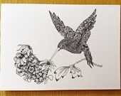 Hummingbird Blank Greeting Card