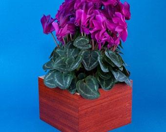 Wooden Planter / Flower Pot / Padauk Flower Pot Holder / Wooden Flower Pot / Flower Display / Flower Planter