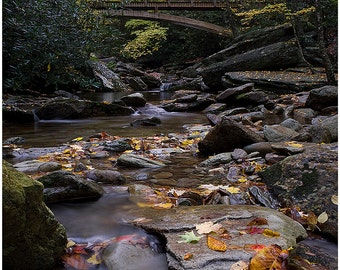 photography,Boone Fork Trail,landscape photo,autumn colors,waterfall,hiking trail,North Carolina,fall colors,hiking photo,Blue Ridge Parkway