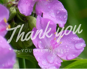 2 Thank you Cards flower Digital 5.5x4.25 In (Real Images taken from all over the world)