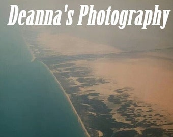 Plane View Beach by Deanna Bernal