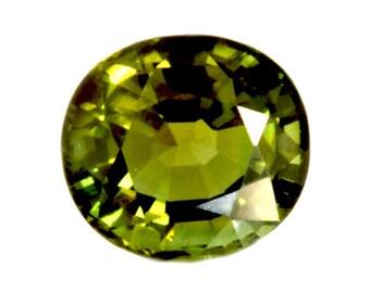 Dignity 3.74 Ct  Natural Green Tourmaline
