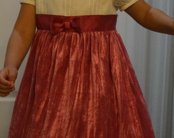 crushed velvet, lace, and sparkles 2T - 3T dress!