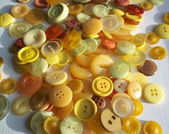 CITRUS BURST 10 button selection