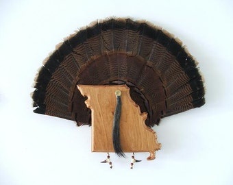 Wild Turkey Tail Fan Display/Mount - State of Missouri - Cherry