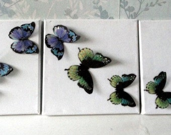 Butterfly canvas Picture wall art trailing butterflies set 3 blue green shabby chic