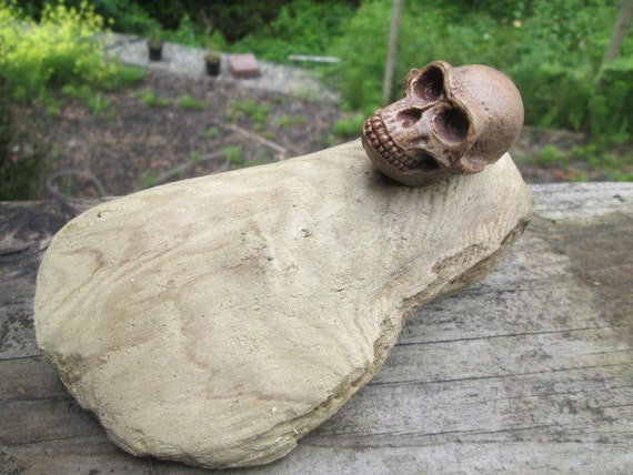 Driftwood and Hominid Skull Replica Mantle Decor