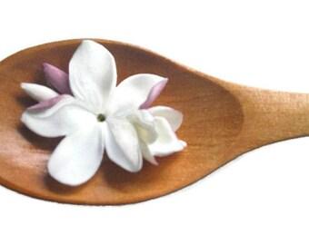 Magnet spoon - fridge magnet - Original Magnet - Jasmine - Customizable Magnet - Customized - Original - Decoration - Magnets