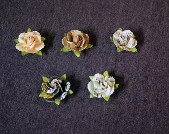 Varied Design Paper Rose Magnets