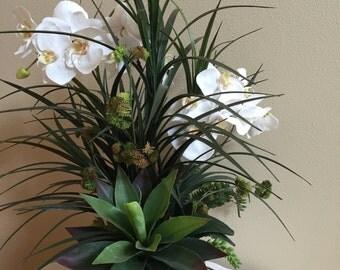 Artificial Orchids, Silk Orchid Arrangements, Tropical Florals, Orchids, Succulents