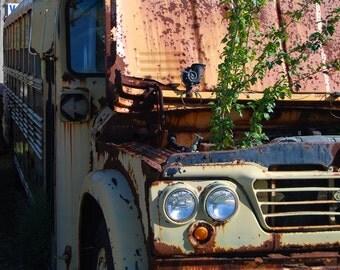 American Ruins - Bus