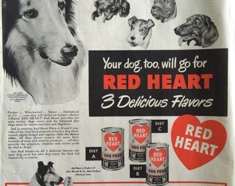 Original 1949 Red Heart Dog Food Ad ft. Lassie
