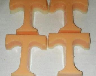 Orange/Vanilla scented wax tart