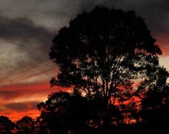 Australia Sunset Photograph Art Print