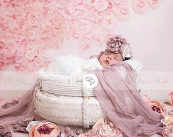 Newborn Digital Backdrop (white/basket/peonies)