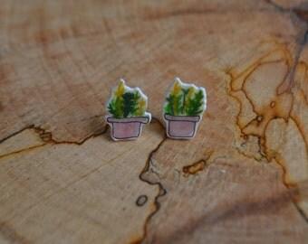 Planted Succulents Cute Earrings