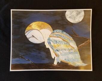 Acrylic Owl Painting Print