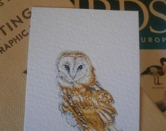 Original watercolour aceo of a beautiful Barn Owl