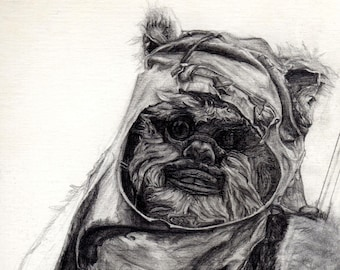 Wicket Unfinished