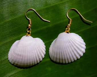 White Shell Earrings with Gold Accents