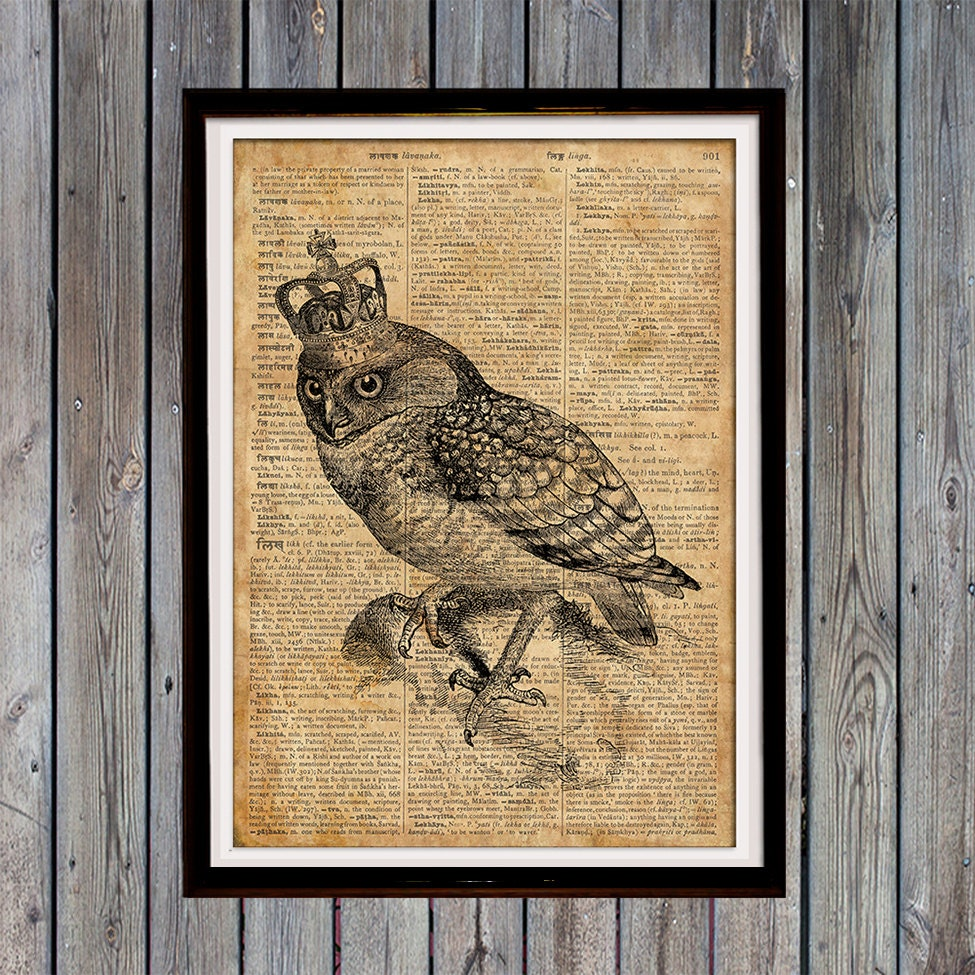 Quirky Wall Decoration : Owl gifts quirky art print bird wall vintage home decor