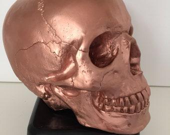Hand cast , hand painted custom skull (large)