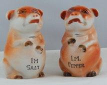 Unique Ceramic Salt Pig Related Items Etsy