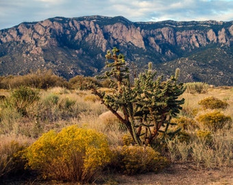 Landscape Photography, Sandia Mountains, Albuquerque New Mexico, Nature Wall Art, Living Room Wall Art, Home Wall Decor, Home Office Art