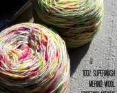 Unicorn Farts - Hand dyed Superwash Merino yarn, rainbow speckles in two variations, 2 ply Fingering weight