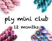 Hand Dyed Yarn Mini Skein Club 12 months. Customizable monthly yarn club subscription. Gift for Knitters, Gift for Crafters. PLY Yarn Club!