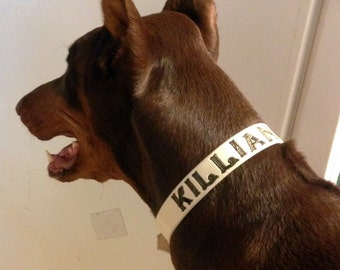 Beer Dog Collar - Killian - Dog Collar - Leather