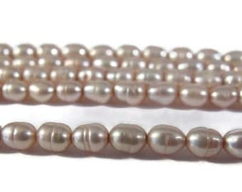 Labor Day SALE - Pink Champagne Pearls, Over 80 Natural Freshwater Rice Pearls, Pale Pink Beads, 15.5 Inch Strand, 5x3.5mm, Jewelry Supplies